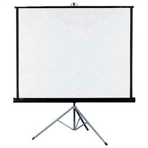 Where to find PROJECTION SCREEN -60 X60 - in Caldwell