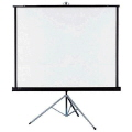 Rental store for PROJECTION SCREEN -60 X60 - in Caldwell ID