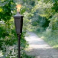 Where to rent PARTY TORCH - BRONZE  5  TALL in Caldwell ID