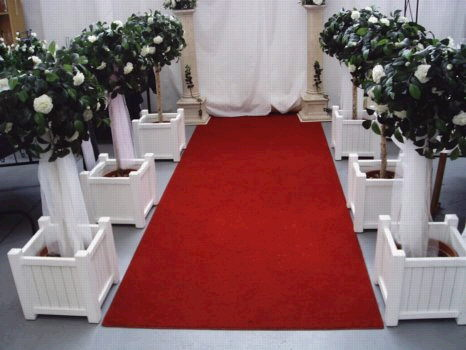 Where to find CARPET RUNNER, RED 25 in Caldwell